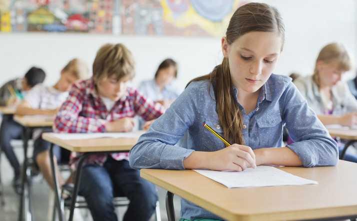 elevi-clasa-6-evaluare-nationala