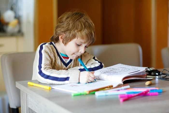 consultare-temele-pentru-acasa