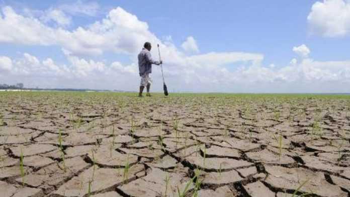 foamete criza umanitara
