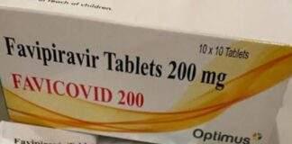 favipiravir anti